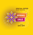 spring yellow sale poster vector image