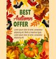 autumn sale farm market discount poster