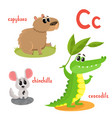 cartoon of wild animals vector image