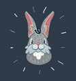 cartoon rabbit and hare vector image vector image