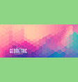 colorful hexagonal pattern modern wide banner vector image