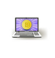 flat laptop computer monitor with bitcoins vector image vector image