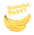 fruit banana party white background image vector image