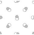 round pot aloe pattern seamless vector image vector image