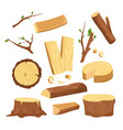 set of materials for wood vector image vector image