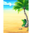 background vacation with sun sea sky palm trees vector image