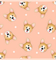 cute corgi on light orange background vector image vector image