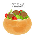 delicious falafel full of meat and fresh vector image vector image