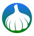 garlic simple sign white icon in bluish vector image