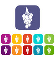 grapes icons set flat vector image vector image
