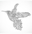 hummingbird with floral ornament vector image vector image