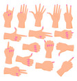 set female hands vector image