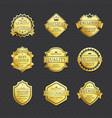set golden labels best choice premium quality vector image