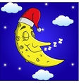 Sleeping moon cartoon vector image