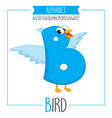alphabet letter b and bird vector image vector image