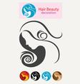 Beauty hair vector image vector image