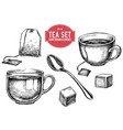 collection hand drawn tea stuff vector image