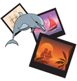 dolphin and photoframes vector image vector image