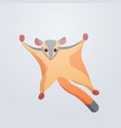 flying fox sugar glider icon cartoon endangered vector image vector image