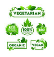 green eco vegetarian organic food icon banner set vector image vector image