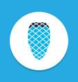pine cone icon colored symbol premium quality vector image
