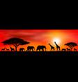 savanna animals on a background a sunset sun vector image vector image
