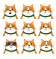 set of different emotions cat portrait of animal vector image vector image