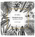 tropical wedding greeting card or invitation vector image vector image