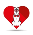 cute dog pet with siberian glasses heart vector image