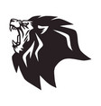 angry lion roaring logo mascot vector image vector image