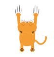 cartoon red orange cat back view red bloody claws vector image vector image