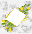 classic marble template with lemon brunches vector image