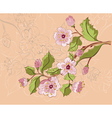 Colored Sketch of Sakura Branch vector image vector image