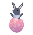 cute rabbit and egg easter vector image