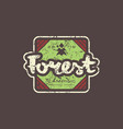emblem with rough texture for forest camping vector image vector image