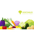 fresh vegetables on white background vector image