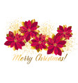 xmas luxury gold poinsettia decorative flowers vector image vector image