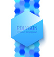 Abstract Polygonal Shape vector image vector image