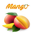 fruit mango white background image vector image