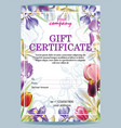 gift voucher template with irises vector image vector image