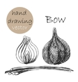Hand Drawn bow Monochrome sketch vector image vector image