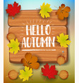 Hello autumn banner paper colorful tree leaf