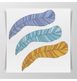 Set of three hand-drawn graphic Feathers vector image vector image