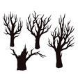 dry trees black silhouettes vector image