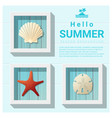 hello summer background with sea creatures vector image vector image