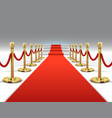 hollywood luxury and elegant red carpet with vector image vector image