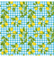 lemon and check seamless pattern vector image
