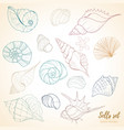 seashell paradise holiday marine set vector image