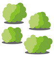 Set of four different cartoon green bushes