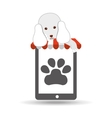 digital pet shop with poodle and paw vector image